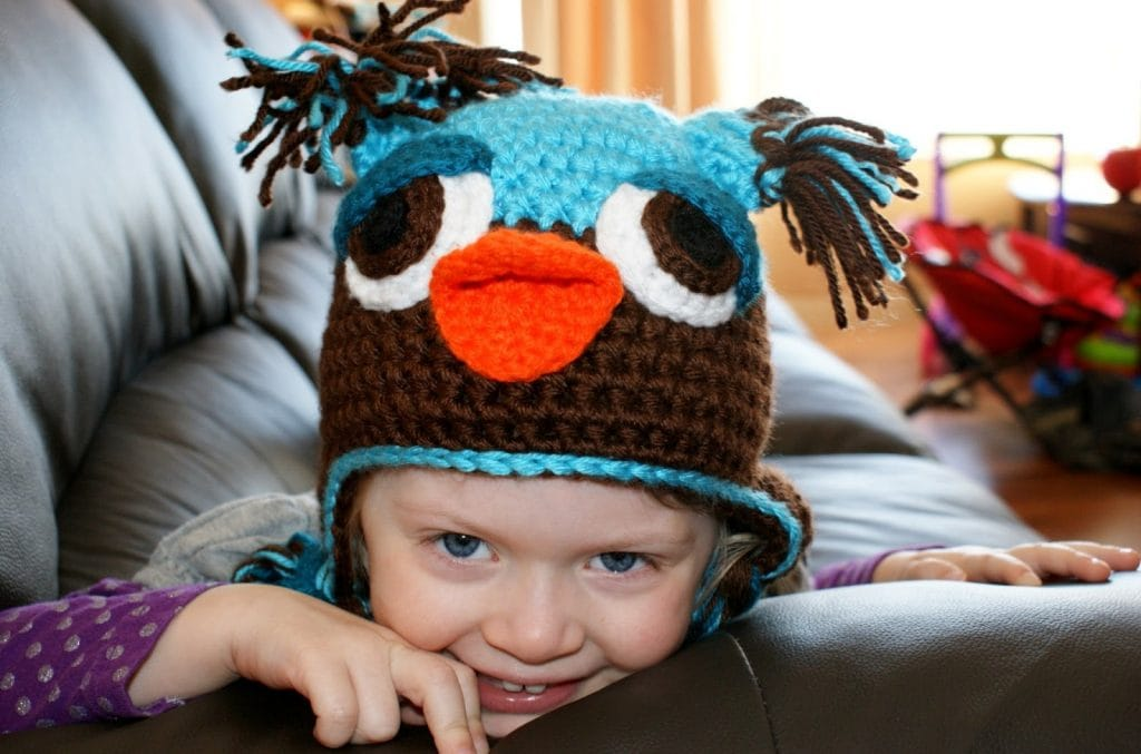 Owl Hat Free Toddler Crochet Pattern
