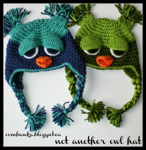 Not ANOTHER Owl Hat! Toddler Size