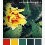 Summer Cactus – Colour Palette