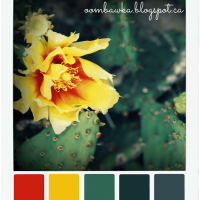 Summer Cactus – Colour Palette