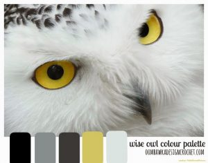 Color Palette. Wise Owl Colour Palette. Oombawka Design.