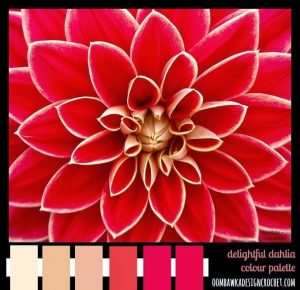 Dahlia. Color Palette. Oombawka Design.