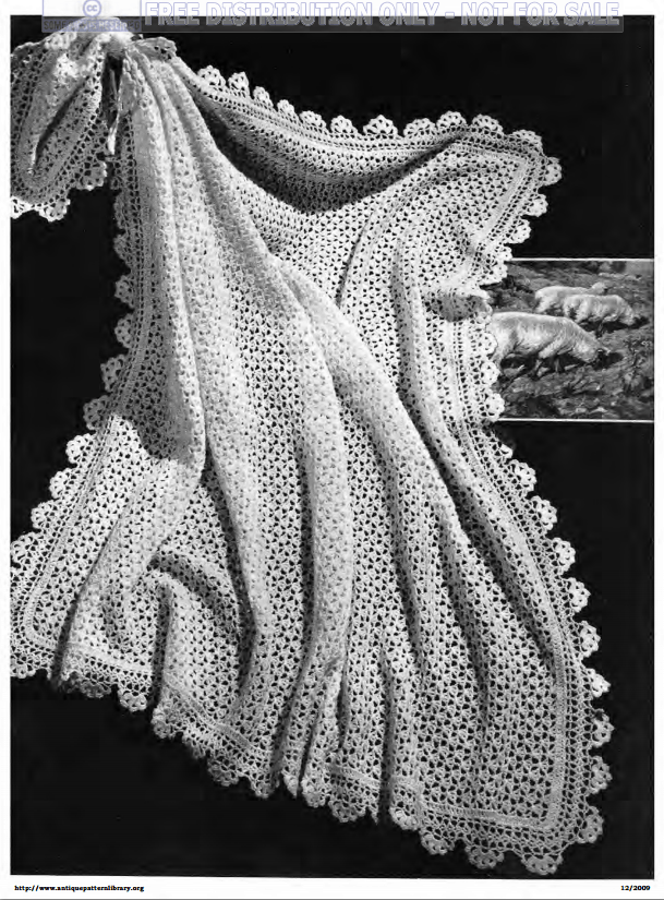 All Over Lace Shawl