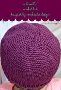 Is it Knit Crochet Hat Etsy