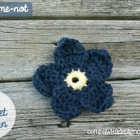 Forget-Me-Not Free Pattern
