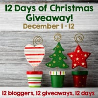 Giveaway The 12 Days of Christmas