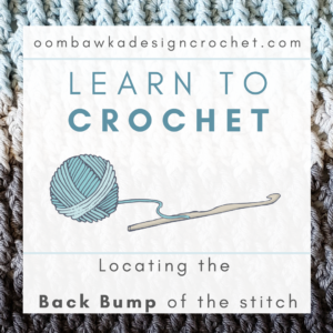 Tutorial Learn To Crochet Locate the Back Bump