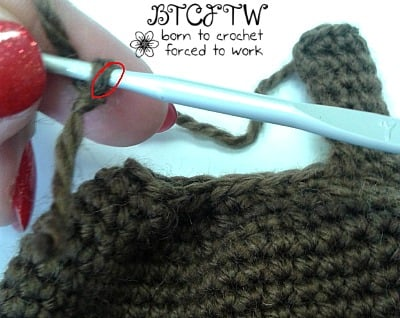 6 Beary   Guest Post Contributor   Born to Crochet Forced to Work @OombawkaDesign