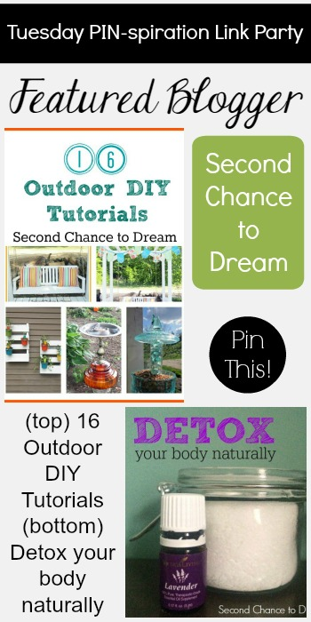 Tuesday PIN-spiration Link Party - Featured Blogger Second Chance to Dream | www.thestitchinmommy.com