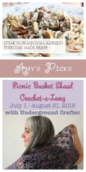 Amy's Picks Steak Gorgonzola Alfredo – Olive Garden's Copycat Everyday Made Fresh and Picnic Basket Shawl Crochet-a-Long Week 1 Underground Crafter