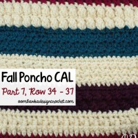 Crochet With Us | Fall Poncho CAL | Part 7