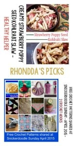 Tuesday PIN Party | Rhonddas Picks Healthy Helper and 2 Crochet Hooks