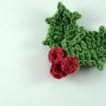 Holly for the Cup Cozy | oombawkadesigncrochet.com