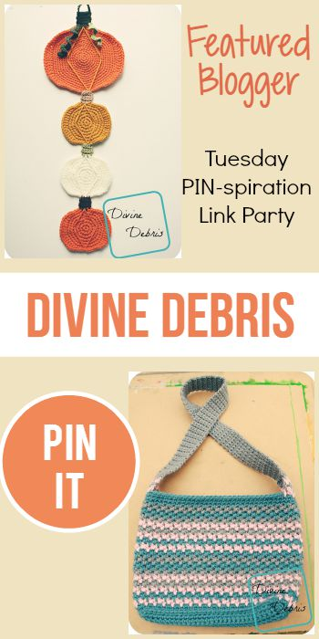 Tuesday PIN-spiration Featured Blogger - Divine Debris | www.thestitchinmommy.com