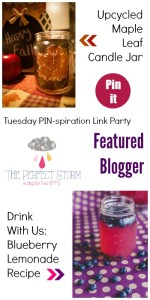 The Perfect Storm Featured Blogger Tuesday PIN-spiration Link party