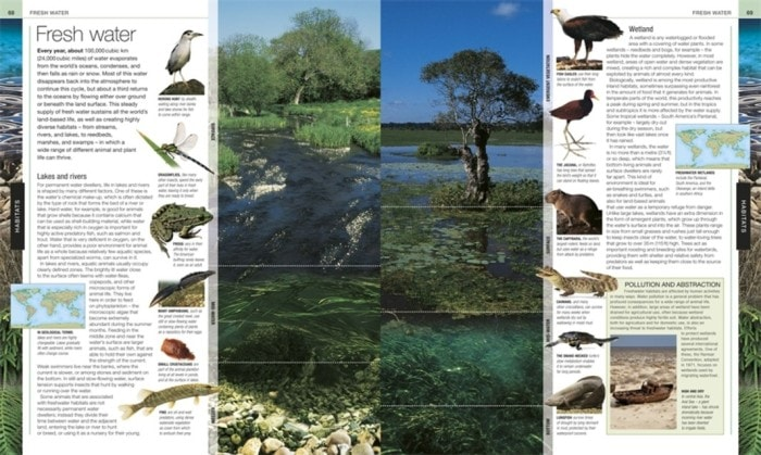 Fresh Water | Animal The Definitive Visual Guide | Book Review
