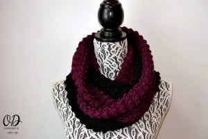 The Scarf A Month Club! January Infinity Scarf
