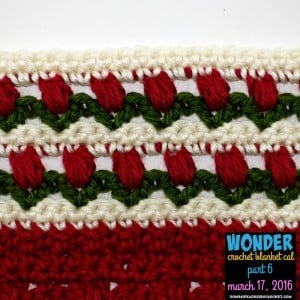 WONDER Crochet Blanket CAL Part 6