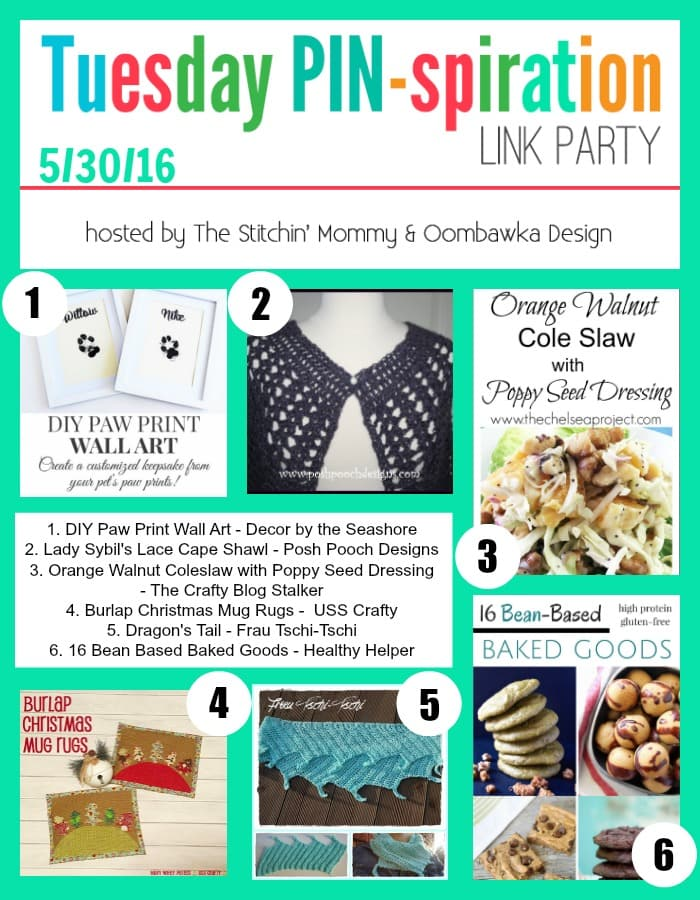 The NEW Tuesday PIN-spiration Link Party Week 5 (5/30/2016) - Rhondda and Amy's Favorite Projects | www.thestitchinmommy.com