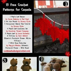 Oh Canada Crochet Patterns for Canada