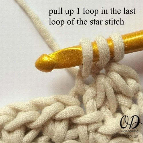 Starry Night 1 loop in last loop of star stitch