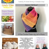 DIY Projects, Crochet Pumpkins and Scarves and Sushi Bowls