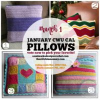 Choose Your Own 2017 CAL – Month 1 – JANUARY PILLOWS