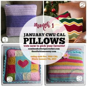#2017CALOFTHEMONTH JANUARY PILLOWS