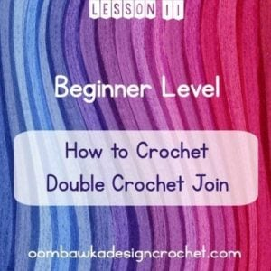 BEGINNER LEVEL LESSON 11 DOUBLE CROCHET JOIN