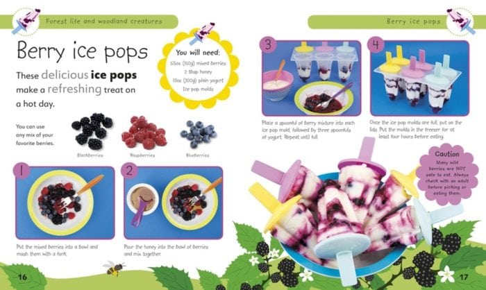 Berry Ice Pops - Forest Life and Woodland Creatures- DK Book Review