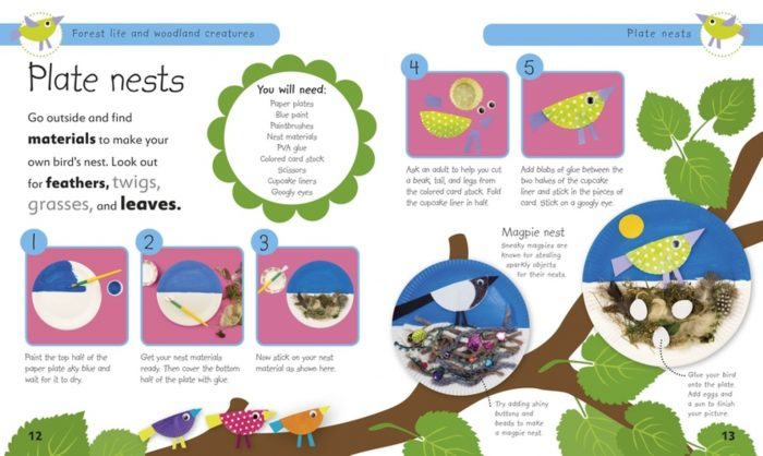 Plate Nests - Forest Life and Woodland Creatures- DK Book Review