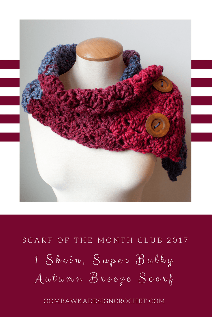 1 Skein Super Bulky Autumn Breeze Scarf