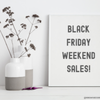 Black Friday Weekend Sales