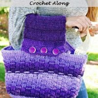 Purple-Passion-Project-Purse-Free-Crochet-Pattern-Crochet-Along-by-Nickis-Homemade-Crafts-Facebook