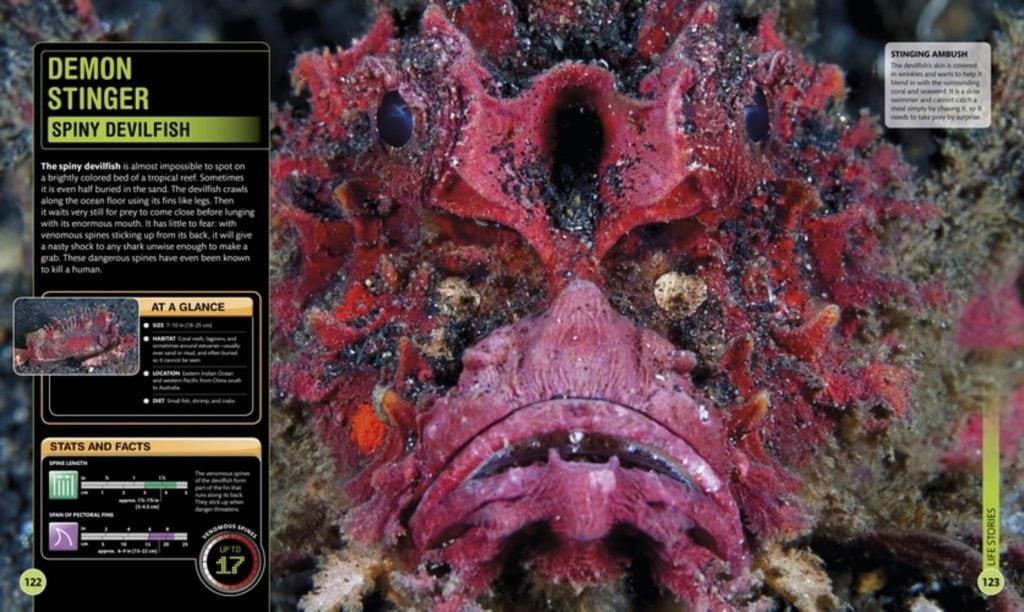 Demon Stinger - Super Shark Encyclopedia - DK Canada - Review by Oombawka Design