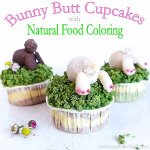 Featured at Wednesday Link Party 239. Bunny Butt Cupcakes by Sew Historically
