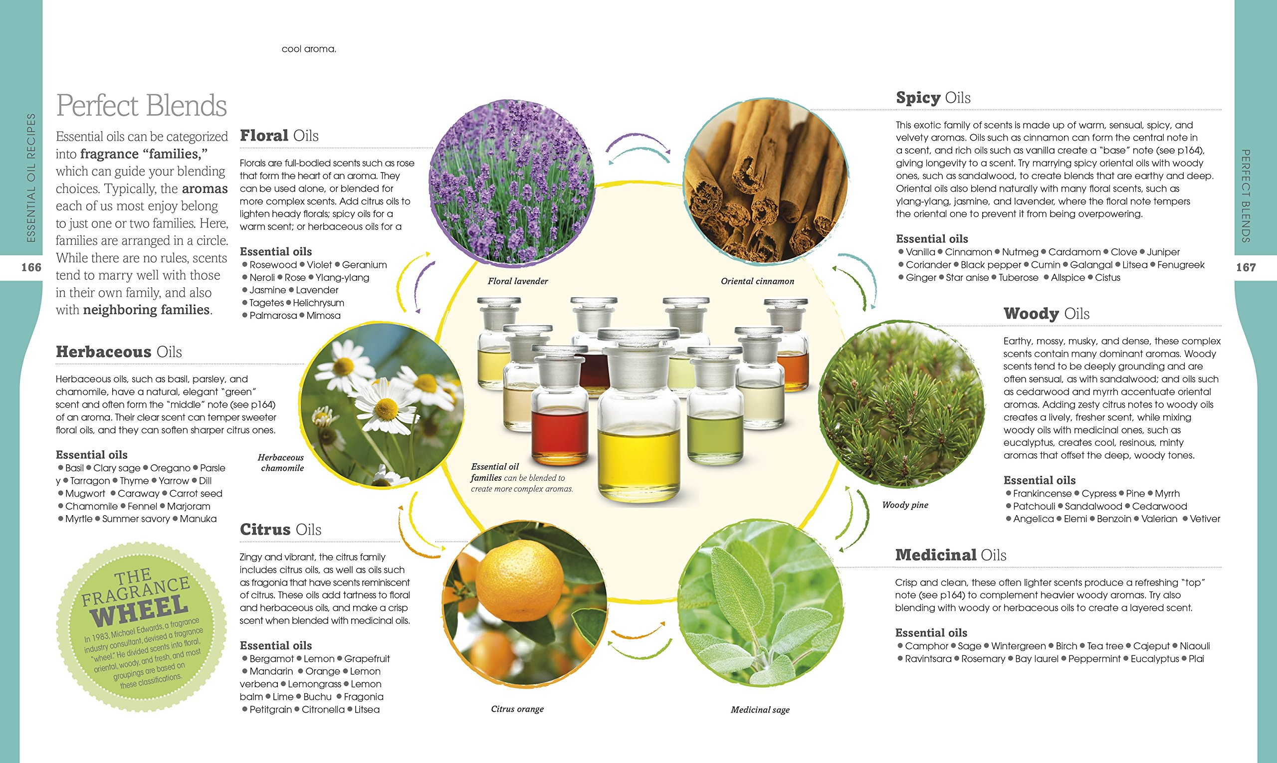 Essential Oils. DK Canada. Image Credit Amazon. Book Review Oombawka Design Crochet