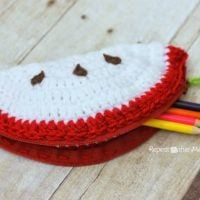 Crochet Apple Pouch Pattern by Repeat Crafter Me