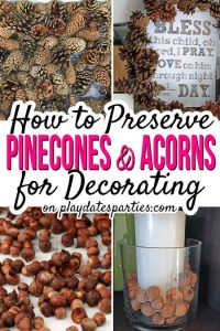 Wednesday Link Party 259 How to Preserve Pine Cones and Acorns for Decorating - From Play Dates to Parties