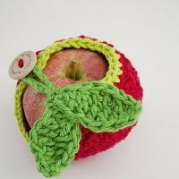 Apple Cozy for School Day Lunches