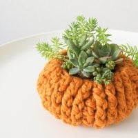 10 Popular Pumpkin Crochet Patterns at Oombawka Design Crochet