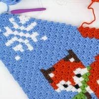 Winter Fox C2C Square Graph by Winding Road Crochet