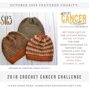 October Featured Charity Challenge to Crochet for Cancer Chemo Caps 2