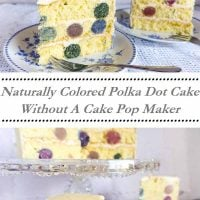 Naturally Colored Polka Dot Cake Without A Cake Pop Maker. Sew Historically