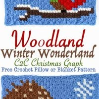 Little Critters Crochet C2C Graphs. Winter Wonderland Crochet Along. Winding Road Crochet