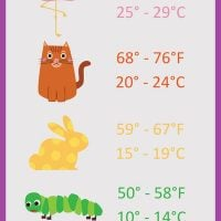 Temperature-Blanket-Color-Chart_Large400_ID-2866537
