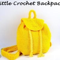 Little Backpack by Nicole Riley