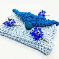 Featured at Wednesday Link Party 311 Card and Coin Purse Cloudberry Crochet