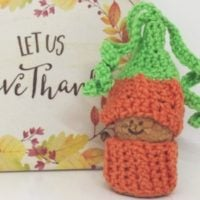 Featured at Wednesday Link party 313 Pumpkin Gnome