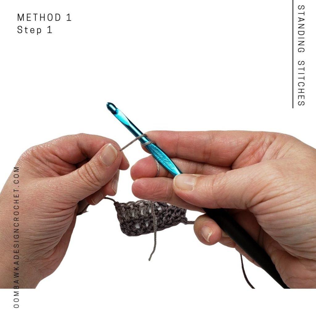 Standing Stitches Method 1 Step 1